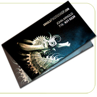 Cold Foil Fold Business Cards